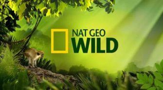 NAT-GEO-WILD