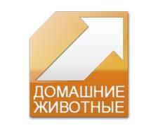 domashnie-zhivotnye