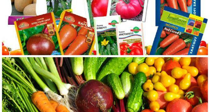Правильно выбираем и покупаем семена овощей » АЛИБИ ...